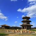 鞠智城の空