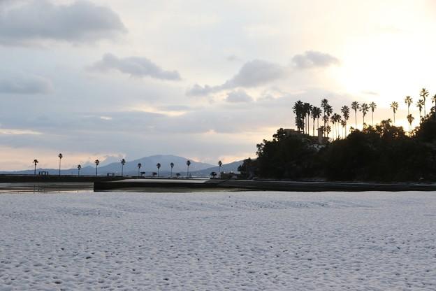 天草雪景色