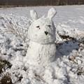 Photos: でっかい雪だるま 名古屋大雪