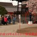 Photos: 平成19年の紫宸殿前