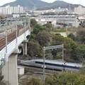 Photos: 都会と自然が同居する場所を突き進む新幹線