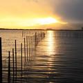 写真: 琵琶湖夕暮れ