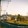 Photos: 朝日を浴びる菊池電車。