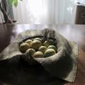 我が家の檸檬