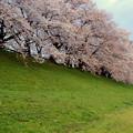 春は曙-2