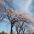 写真: 青空カンバス