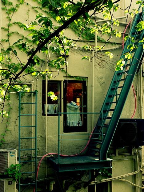 祇園の街角