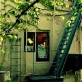 写真: 祇園の街角