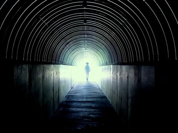 写真: teleportation
