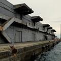 Photos: 小樽