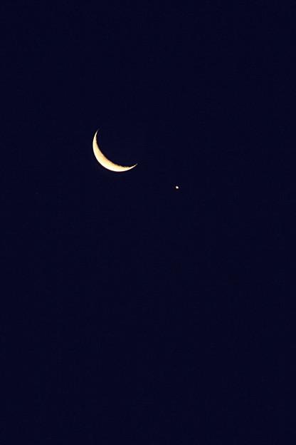Photos: 月の雫