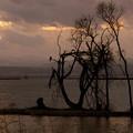琵琶湖の黄昏