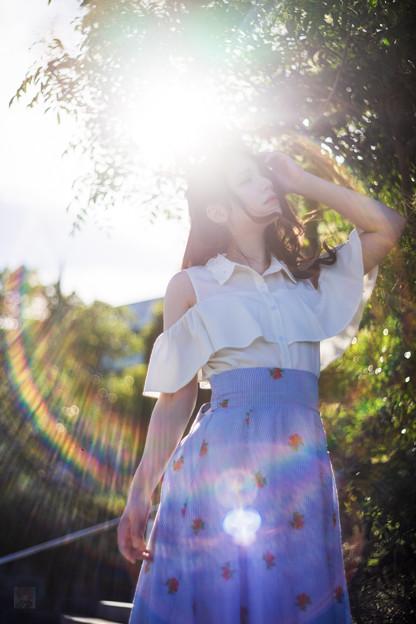 写真: 光をあびて