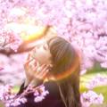Photos: 虹のティアラ