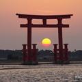写真: 浜名湖弁天島の夕日