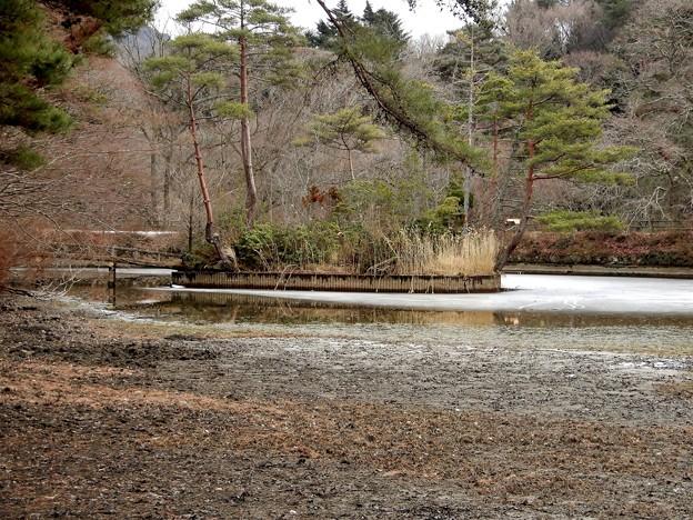 写真: 長谷池4