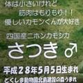 カモシカ園 12