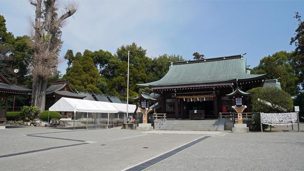 健軍神社(2)