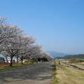 水辺プラザかもと(1)