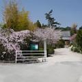 写真: 光蔵寺(1)