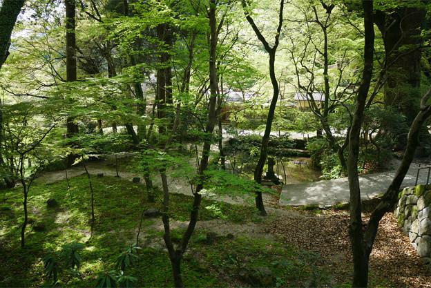 仁比山神社(12)