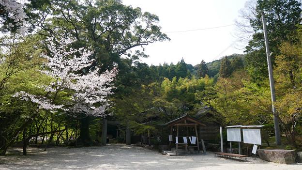 仁比山神社(11)
