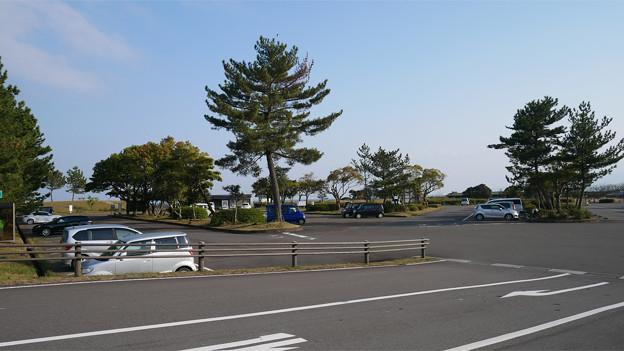 道の駅ビオスおおがた(2)
