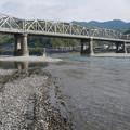 仁淀川橋(5)