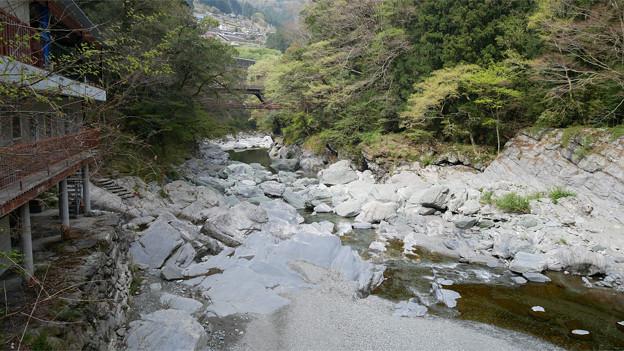 祖谷のかずら橋 (15)