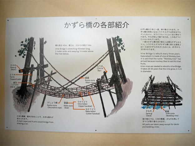 かずら橋夢舞台 (3)