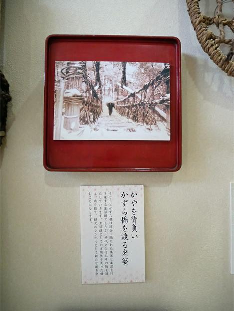 かずら橋夢舞台 (2)