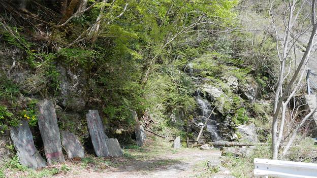 虹の谷公園 (1)