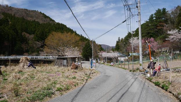 天空の村・かかしの里 (1)