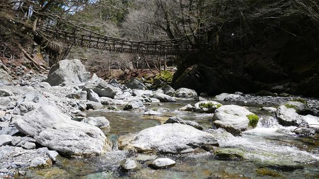 奥祖谷二重かずら橋 (16) 女橋