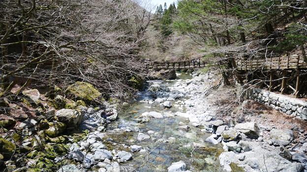 奥祖谷二重かずら橋 (15) 野猿から男橋・女橋を見る