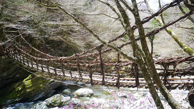 奥祖谷二重かずら橋 (13) 女橋