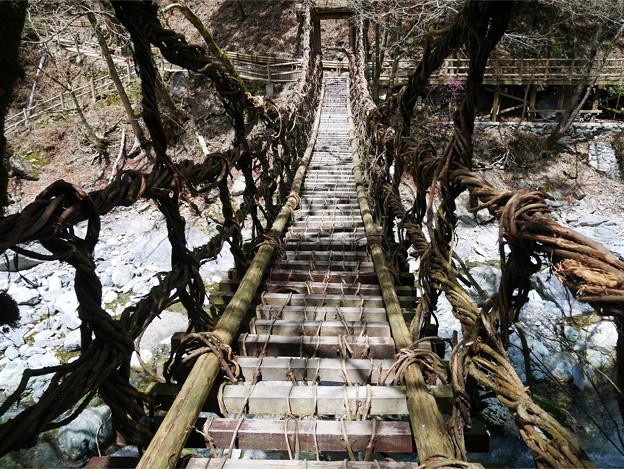奥祖谷二重かずら橋 (7) 女橋