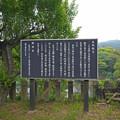 写真: 宗生寺 (7)