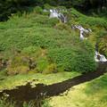 写真: 老野湧水の滝 (3)
