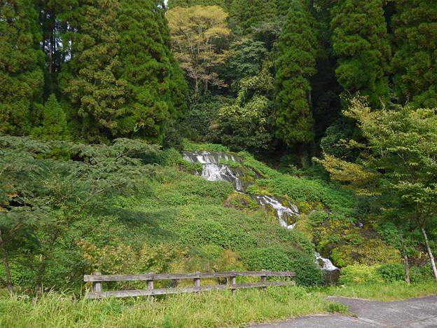 老野湧水の滝 (2)