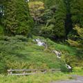 写真: 老野湧水の滝 (2)
