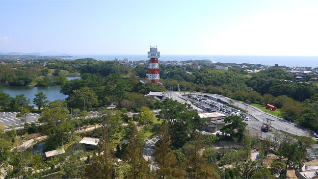 ときわ動物園 (13)