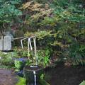 写真: 霧嶋神社 (5)