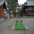 写真: 国見町の淡島神社(5)