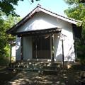 写真: 相島 (12)