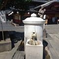 さくら湯 (2)