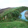 写真: 宮崎市本郷地区の掩体壕 3 (5)