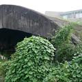 写真: 宮崎市本郷地区の掩体壕 3 (3)