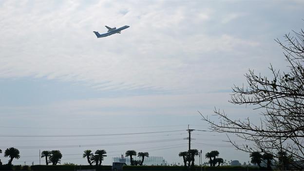 赤江飛行場の弾薬庫跡 (6)