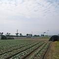 Photos: 赤江飛行場の弾薬庫跡 (3)